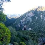Canneland a la Grotta da Castilandia